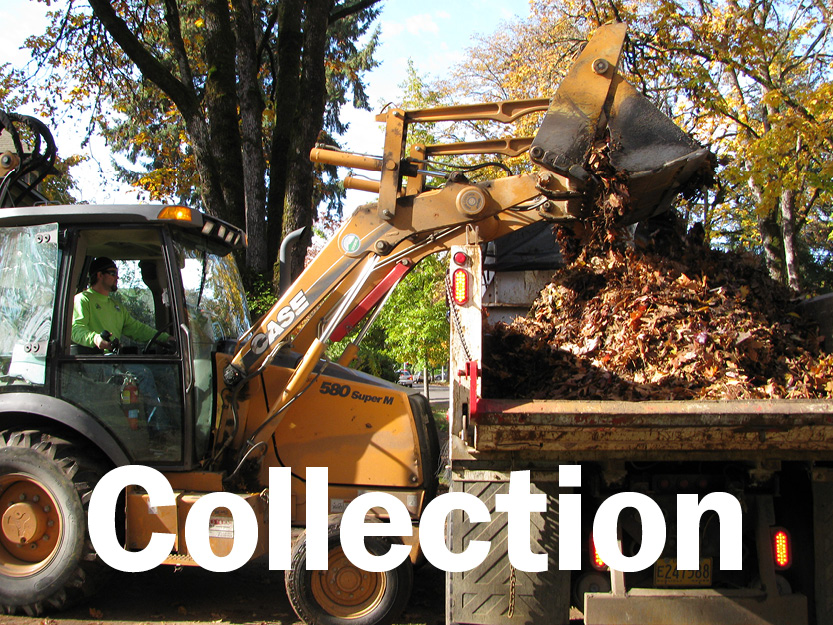Cubic yards of leaves collected to-date this season