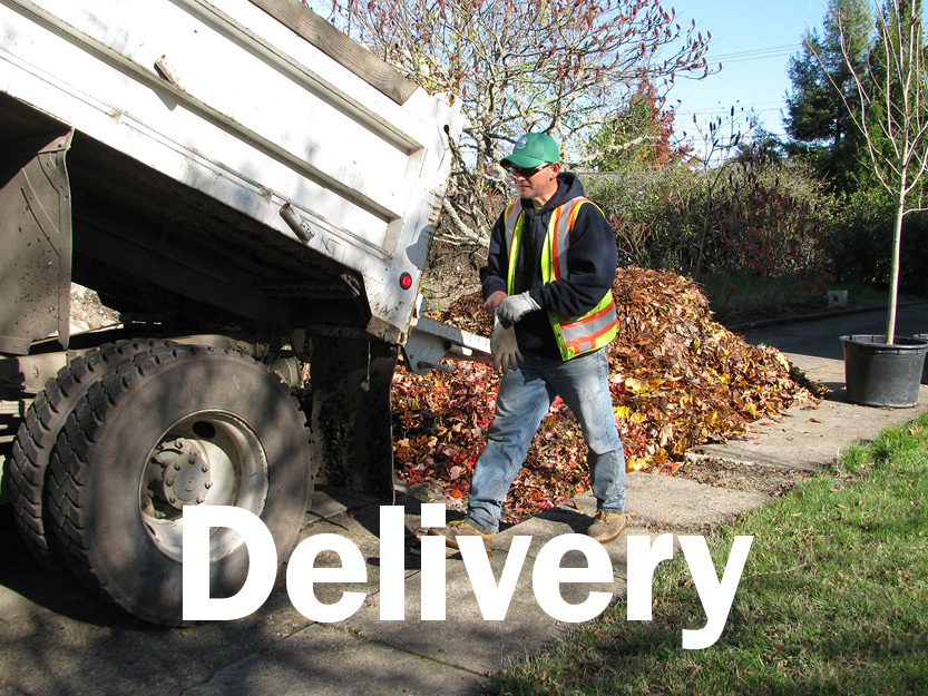 Cubic yards of leaves delivered to-date this season
